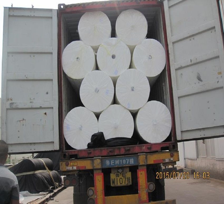 High Strength PP Spunbond Nonwoven
